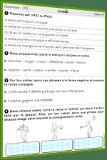 Verbe exercices CE2