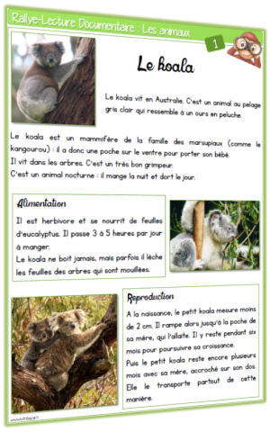 lecture documentaire Animaux rallye