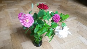Flowers for 19th June 2016