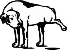 Brand-Aid - Doggywalker (HTML5)