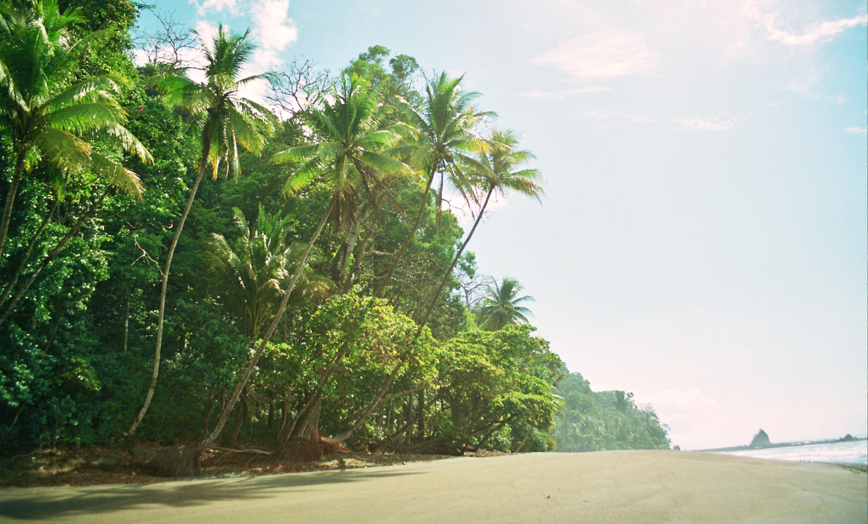 cesta zpět do Carate