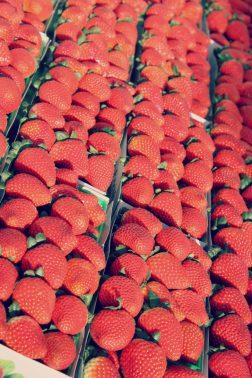 Final Farmers Straw Market 1