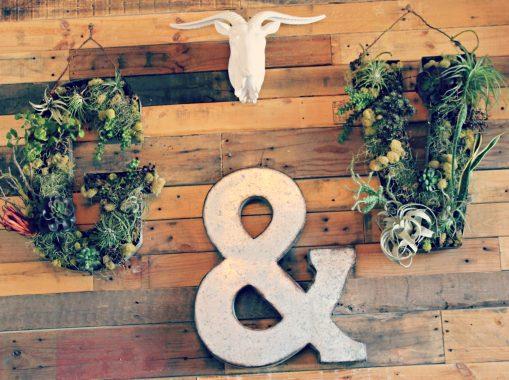 Goat & Vine 5