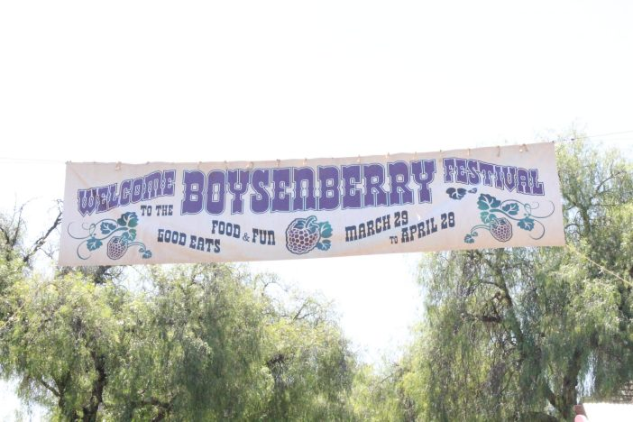 Knott's 2019 Boysenberry Festival