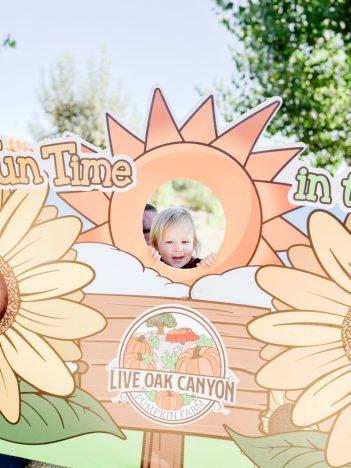 Live Oak Canyon Pumpkin Farm – A Luv Ashland Review