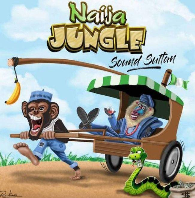 Sound Sultan Naija Jungle download