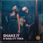 D'Banj Shake It