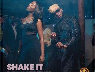 D'Banj Shake It mp3 download