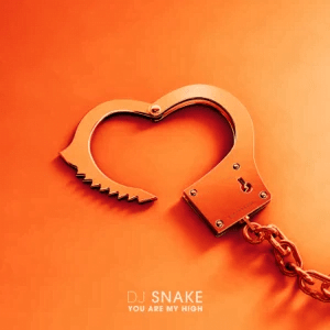DJ Snake You Are My High mp3