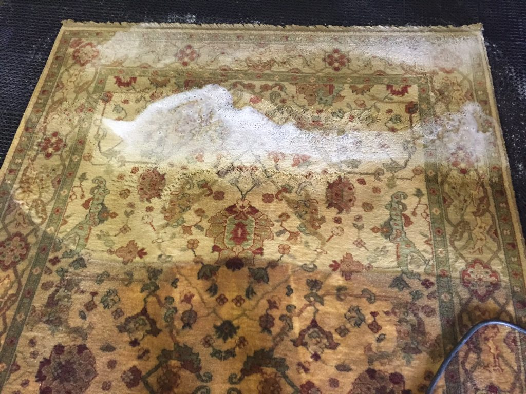 rug cleaning asheville