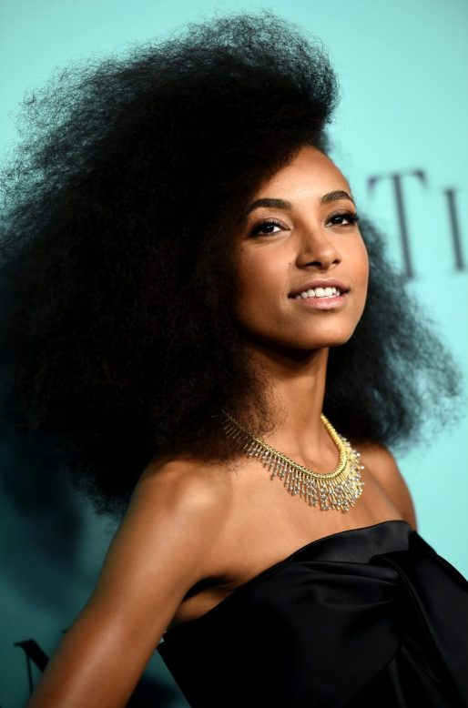 Esperanza-Spalding Tiffany & Co Blue Book Gala 2016 Lux Afrique