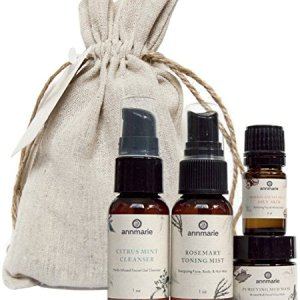 Annmarie Skin Care Purify Travel Kit - Oily Skin Care Set with Cleanser