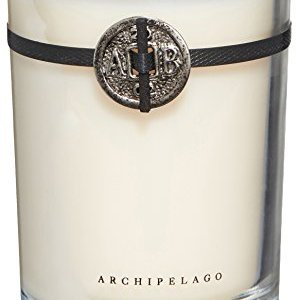 Archipelago Botanicals Pineapple Ginger Soy Candle