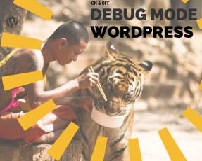 Depurar Wordpress