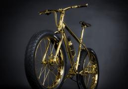 Gold mountain Bike