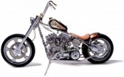 Indian-Larry Wild-Child