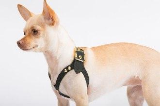 brikk-lux-harness (2)