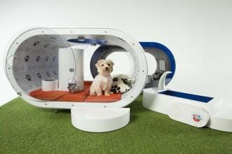 samsung-dream-doghouse