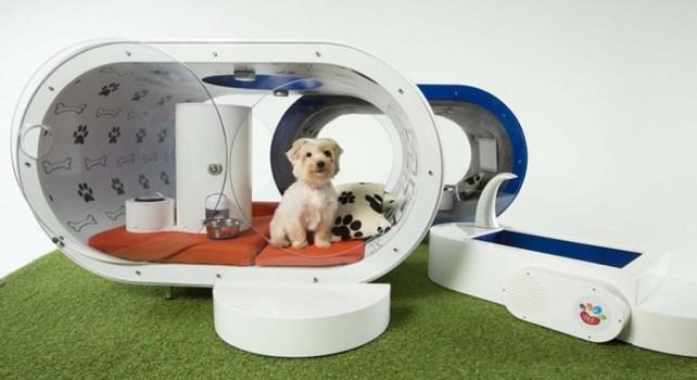 Samsung Dream Doghouse : Une niche pour chien digne d'un hotel 5 étoiles