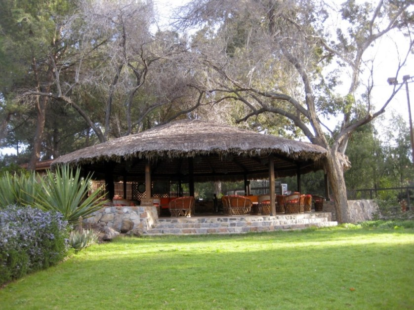 Rancho La Puerta and Its Art-Maralyn D Hill - Outside lounge area