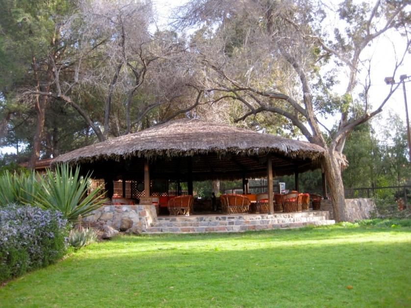 Rancho La Puerta and Its Art-Maralyn D Hill - Outside lounge area