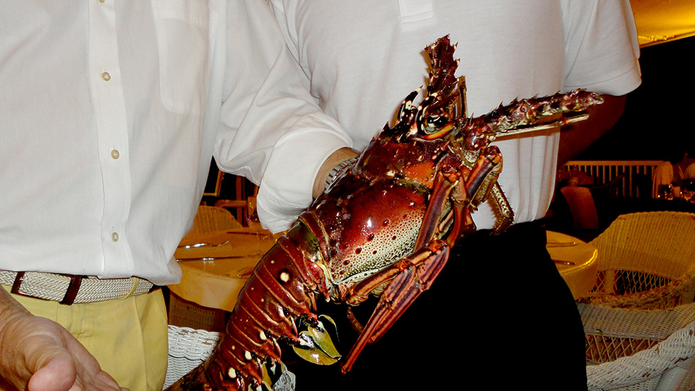 Mouth-watering Bermudian lobster