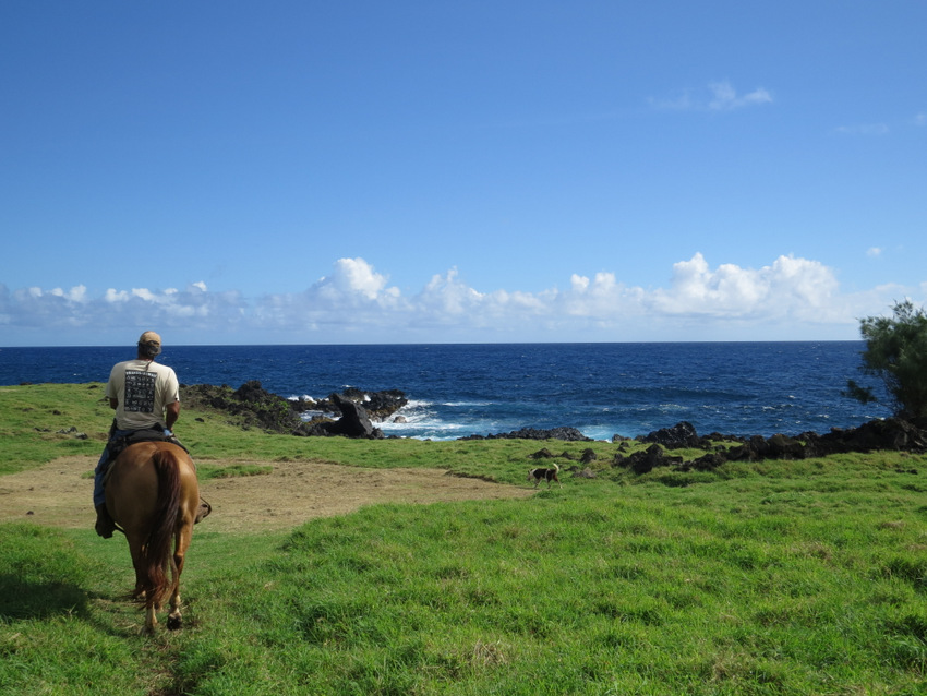 Horseback riding in Hana