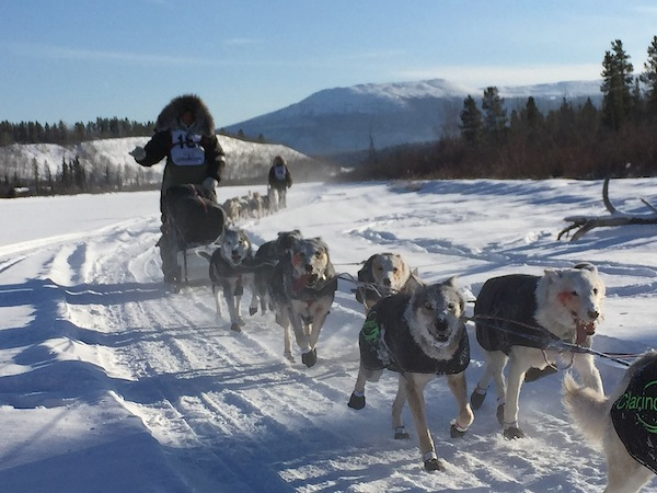 Day 1 of The Yukon Quest