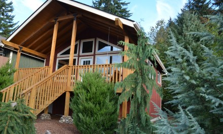 Carson Ridge Luxury Cabins in Carson, Washington