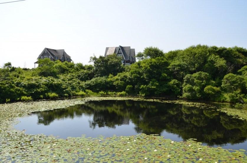 Quiet pond on Block Island.