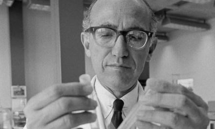 Jonas Salk: Polio Miracle Worker