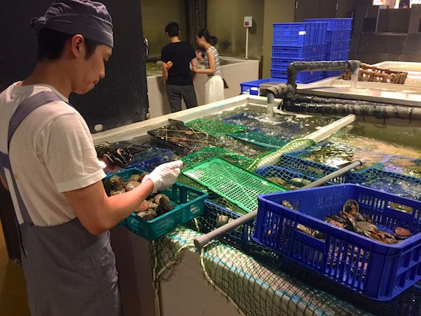 Pick your own fresh seafood at Addiction Aquatic Development