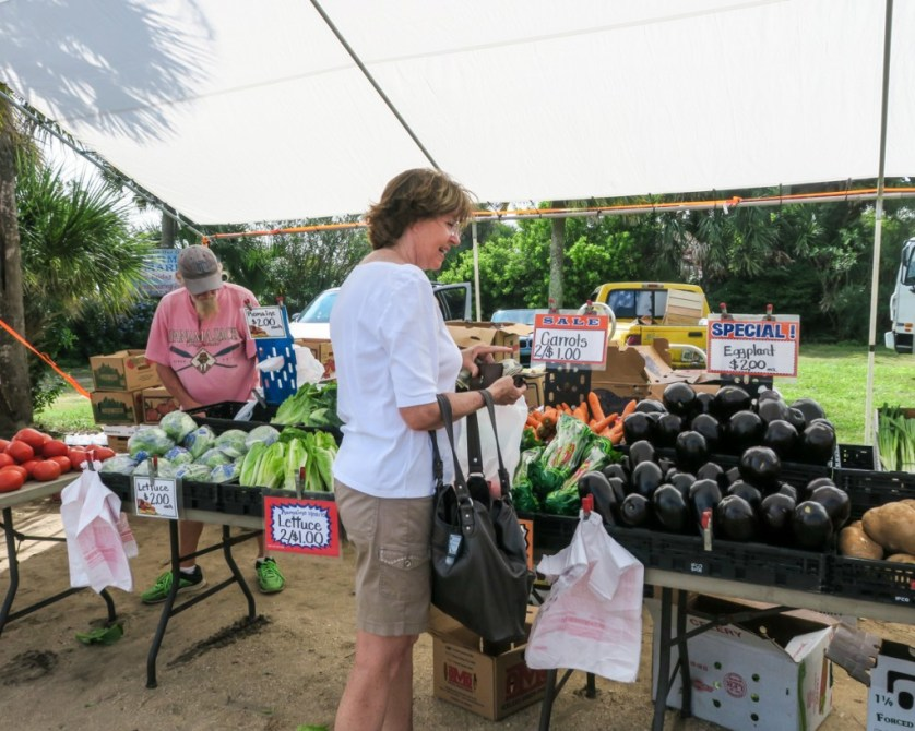 Shopping at the Farmers Market.