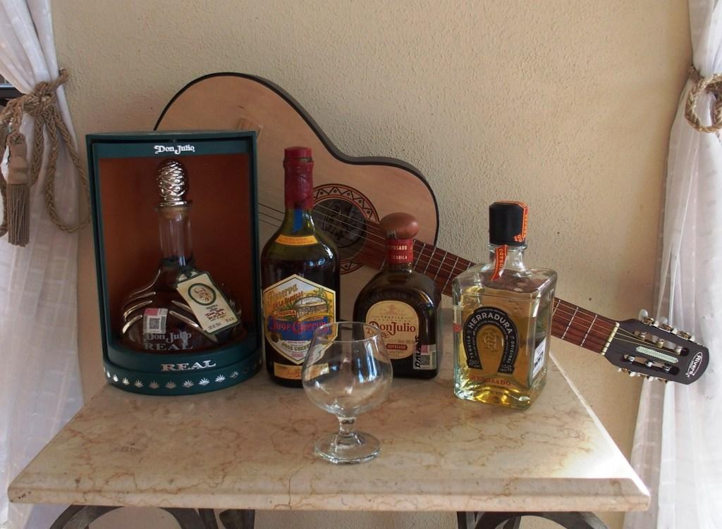 Villa del Palmar tequila