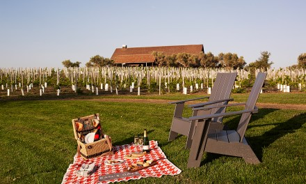 California Eco-Friendly Winery Events For Earth Month in April