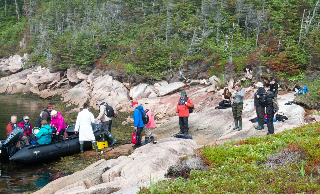 Explorers on Newfoundland's southern coast