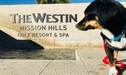 Yappy Hour at the Westin Mission Hills Golf Resort & Spa
