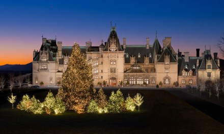 Arrival of 35-foot Fraser fir signals the start of Christmas at Biltmore