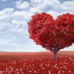 Valentine's Day Etiquette Tips