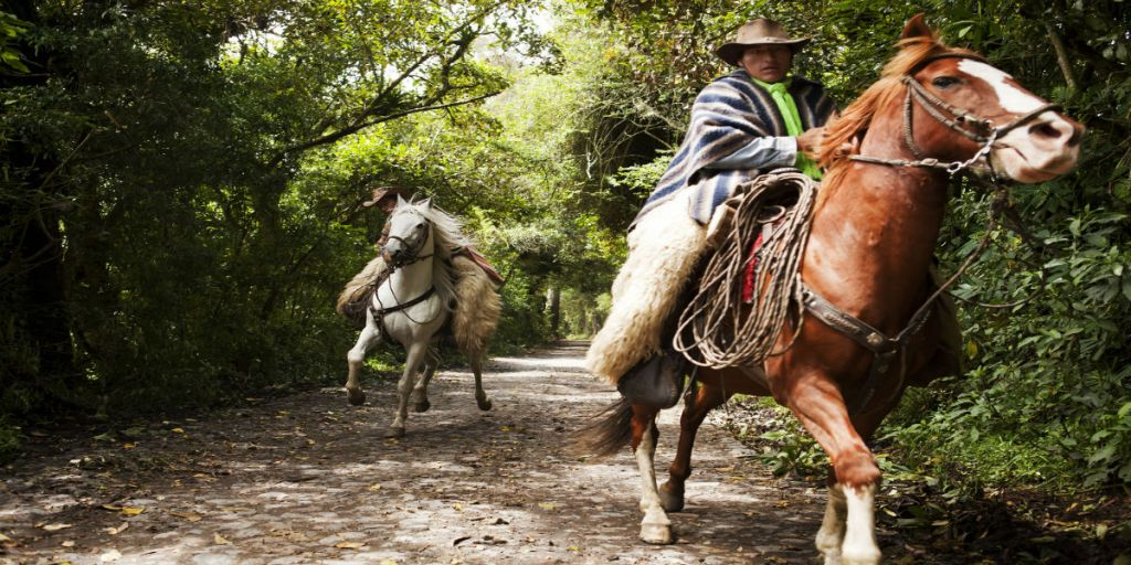 Ecuador Mountains on Horseback