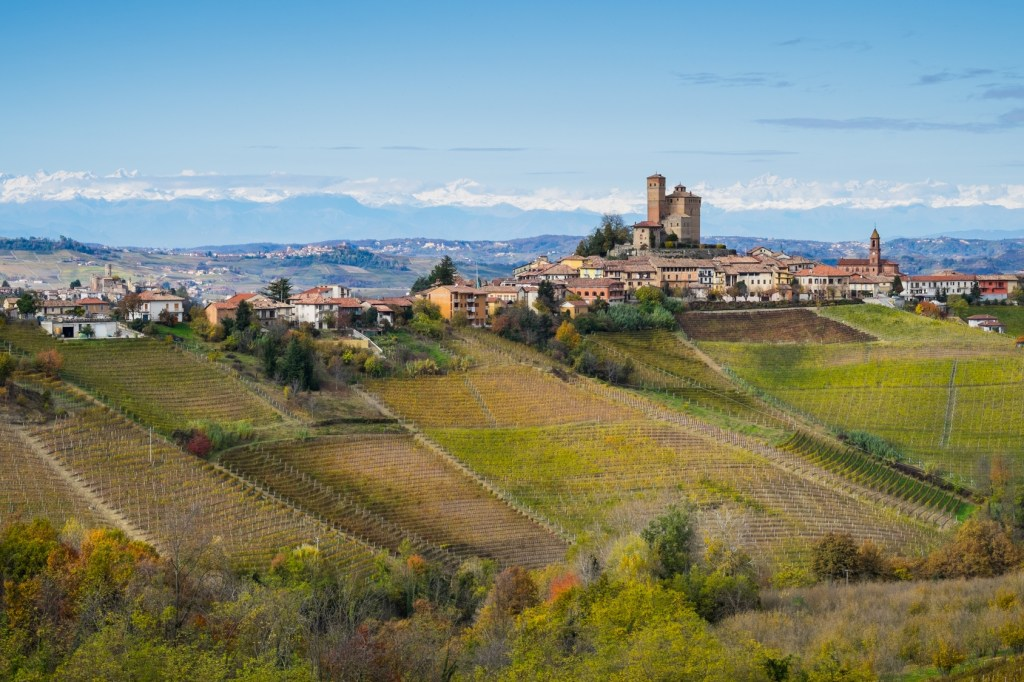Walking Wine Tour in Italy