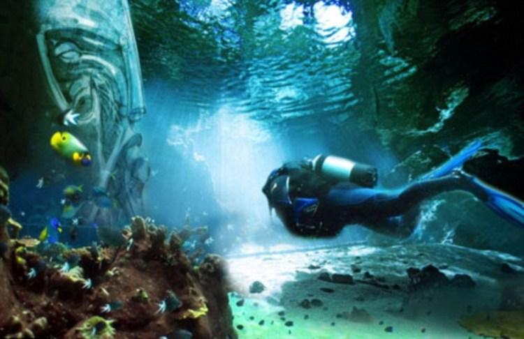Dubai's largest underwater park