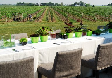 LuxeGetaways_Toronto-Tourism_Stratus Winery and Vineyards