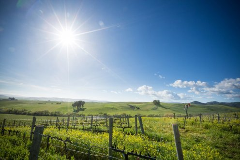 LuxeGetaways - Luxury Travel - Luxury Travel Magazine - Luxe Getaways - Luxury Lifestyle - Napa Valley Wine Experiences - Liana Estates