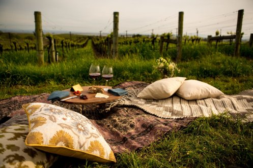 liana-blanket-pillow_photo-credit-michelle-walker