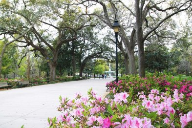 LuxeGetaways - Luxury Travel - Luxury Travel Magazine - Savannah