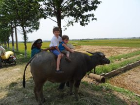 LuxeGetaways - Luxury Travel - Luxury Travel Magazine - Luxe Getaways - Luxury Lifestyle - Family Travel - Travel with Kids - Outcast Otter - Water Buffalo