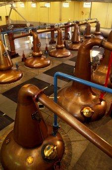 LuxeGetaways - Luxury Travel - Luxury Travel Magazine - Luxe Getaways - Luxury Lifestyle - Luxury Villa Rentals - Affluent Travel - Single Malt - Whiskey Tour Scotland - Tricia Conover - Glenfiddich Distillery