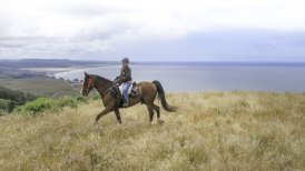 California | Inn at Newport Ranch, Fort Bragg - Horseback Riding