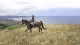 California | Inn at Newport Ranch, Fort Bragg - Horseback Riding